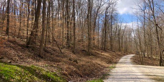 Beautiful Area Overlooking Deer Creek